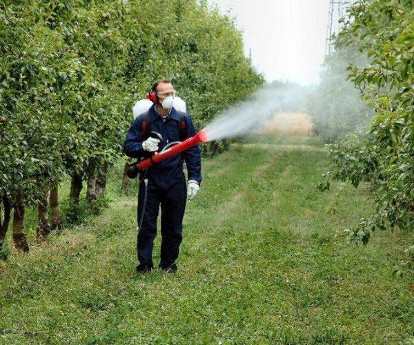 Защита деревьев от ПроКомфорт